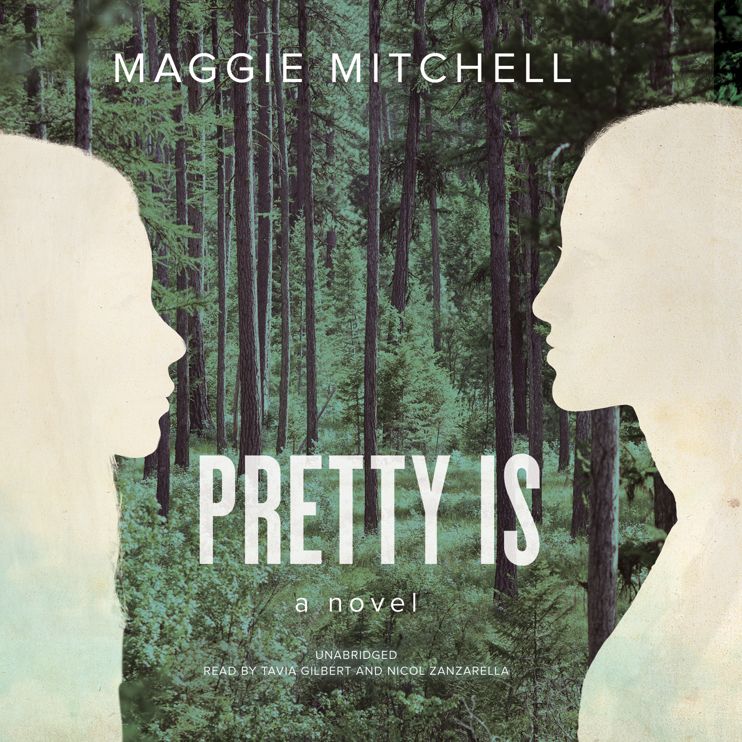 Printable Pretty Is: A Novel Audiobook Cover Art