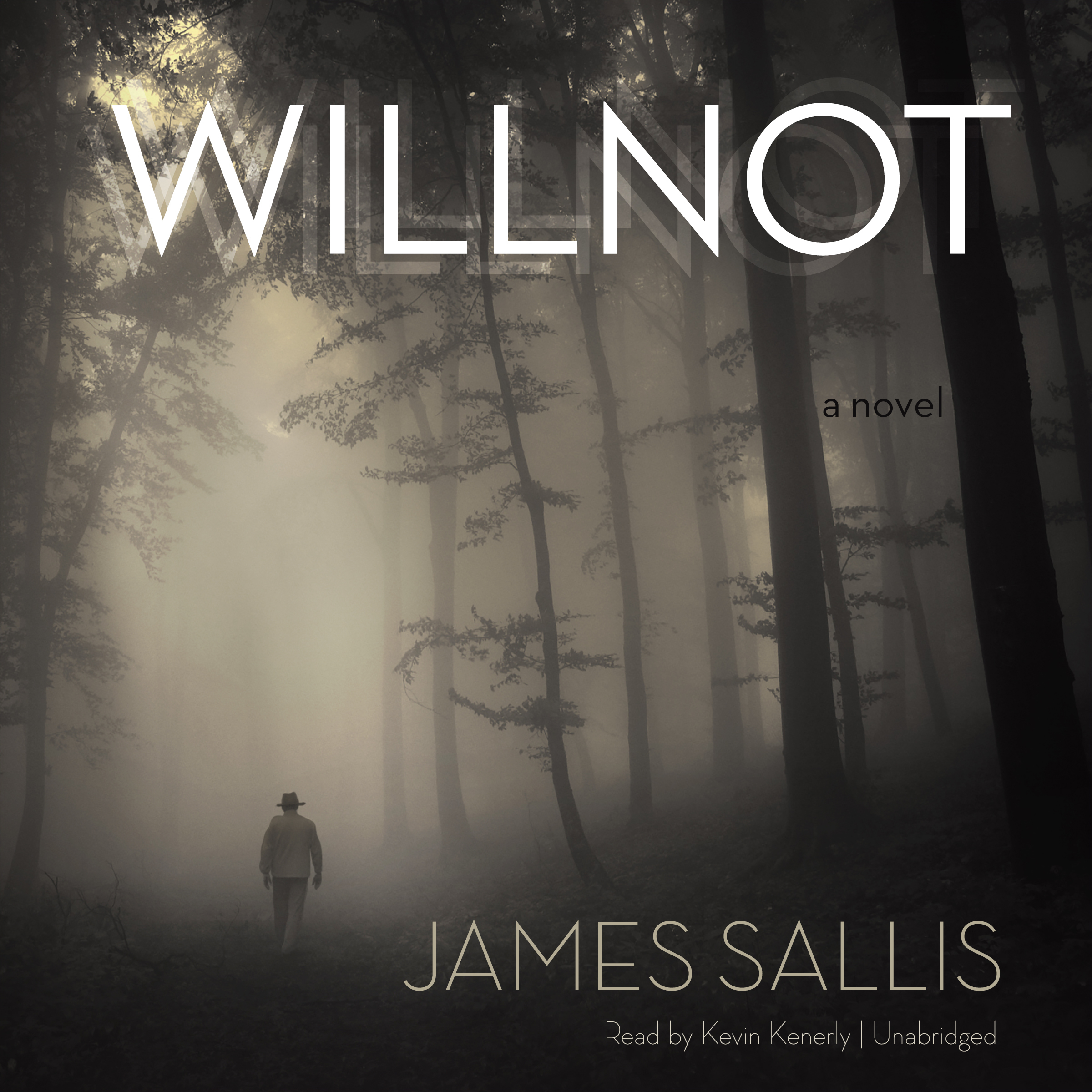 Printable Willnot: A Novel Audiobook Cover Art