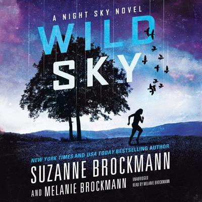 Wild Sky Audiobook, by Suzanne Brockmann