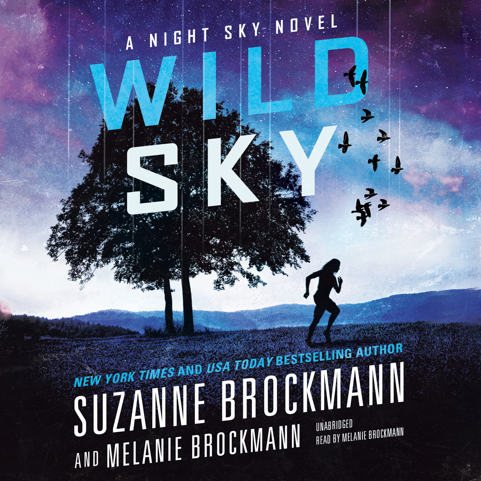 Printable Wild Sky Audiobook Cover Art