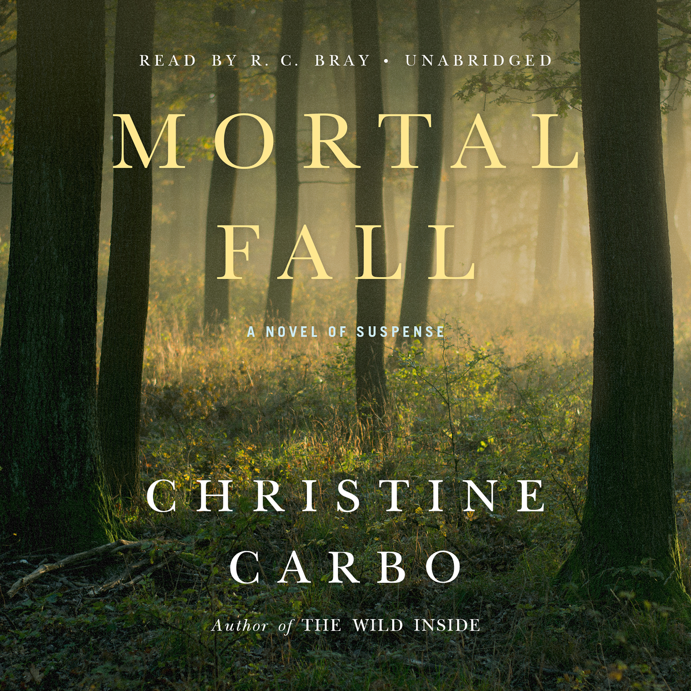 Printable Mortal Fall: A Novel of Suspense Audiobook Cover Art