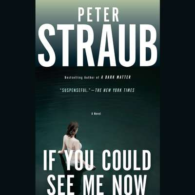 If You Could See Me Now Audiobook, by Peter Straub