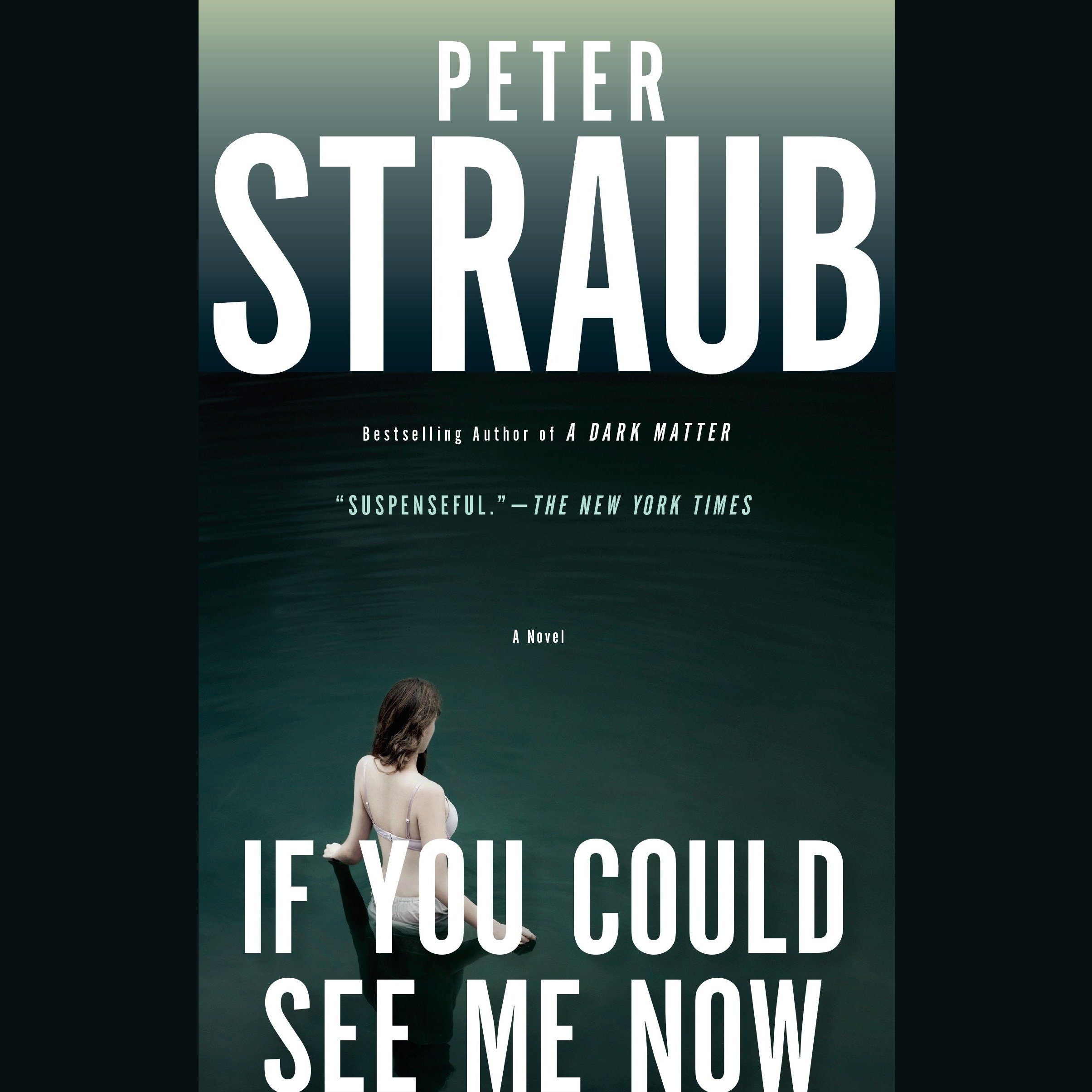 Printable If You Could See Me Now Audiobook Cover Art