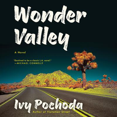 Wonder Valley: A Novel Audiobook, by Ivy Pochoda