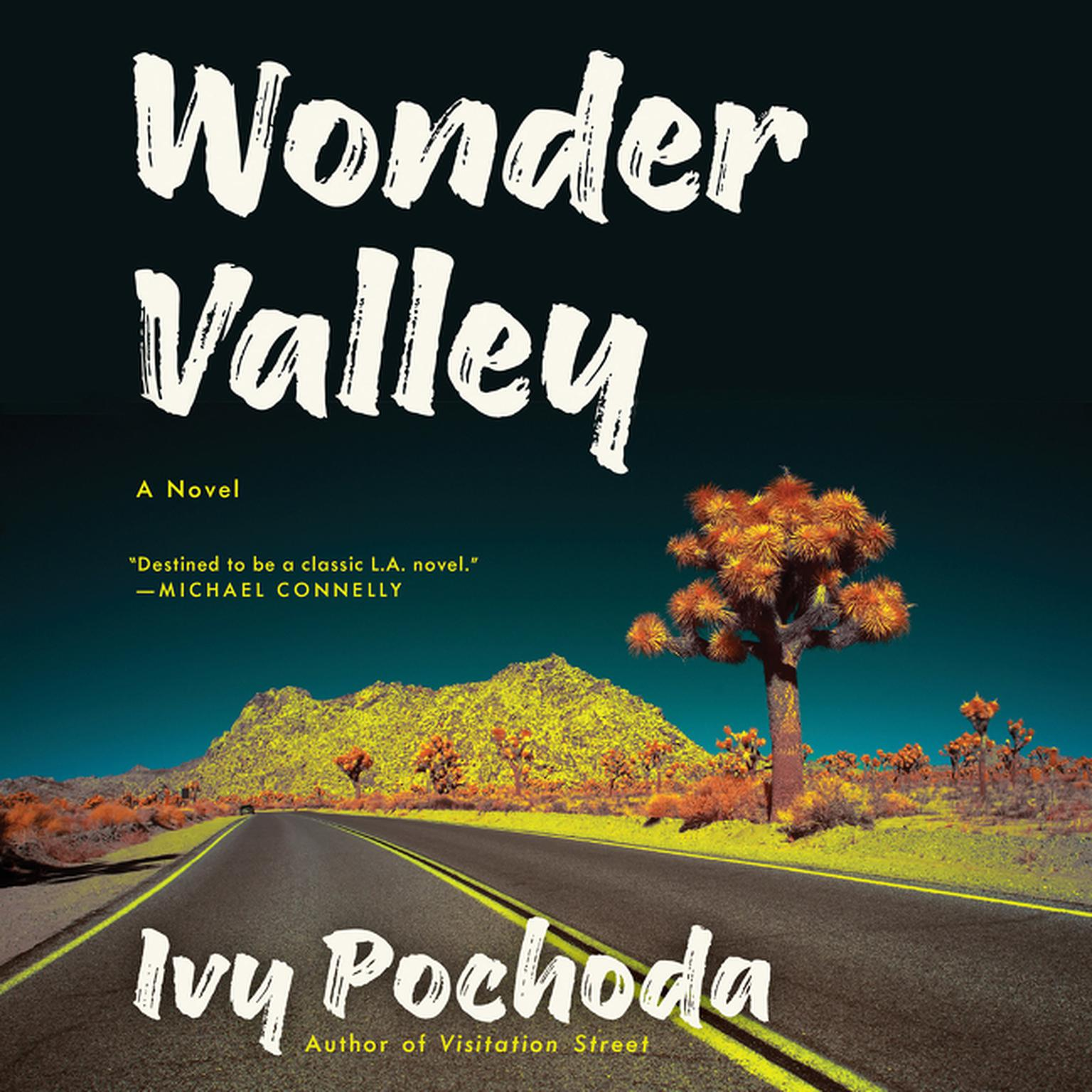 Printable Wonder Valley: A Novel Audiobook Cover Art