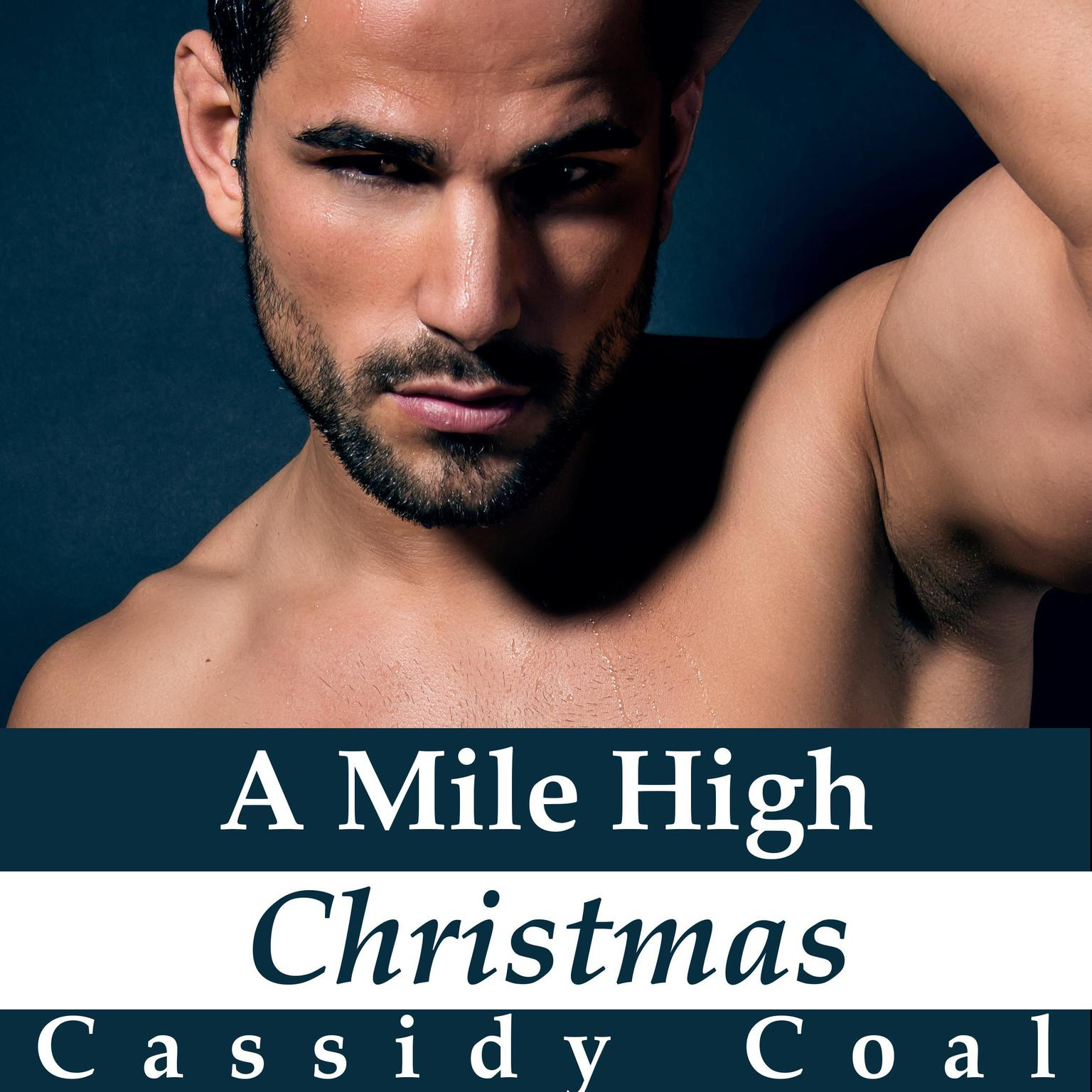 A Mile High Christmas (A Mile High Romance Book 1) Audiobook, by Cassidy Coal