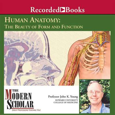 Human Anatomy: The Beauty of Form and Function Audiobook, by John K. Young