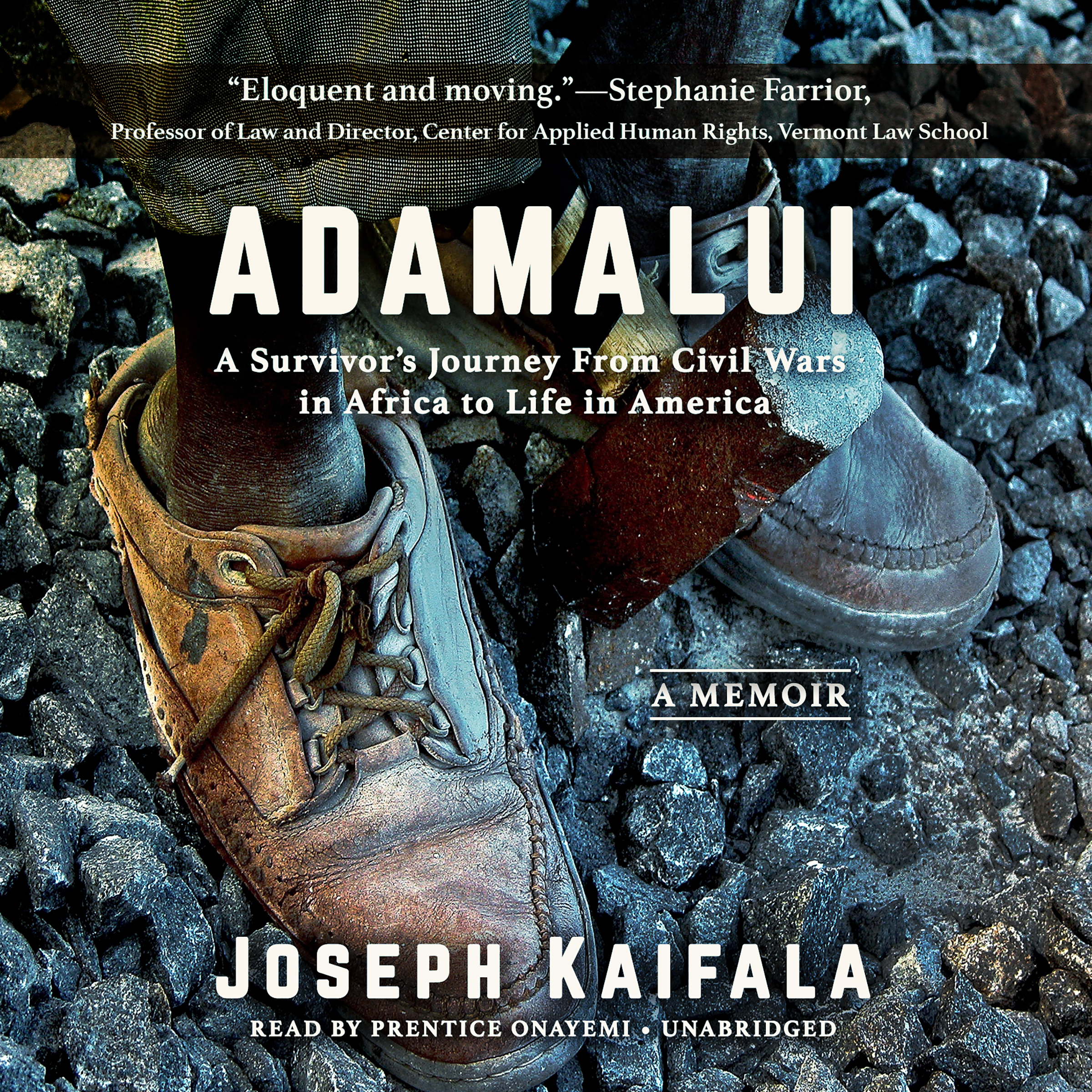 Printable Adamalui: A Survivor's Journey from Civil Wars in Africa to Life in America Audiobook Cover Art