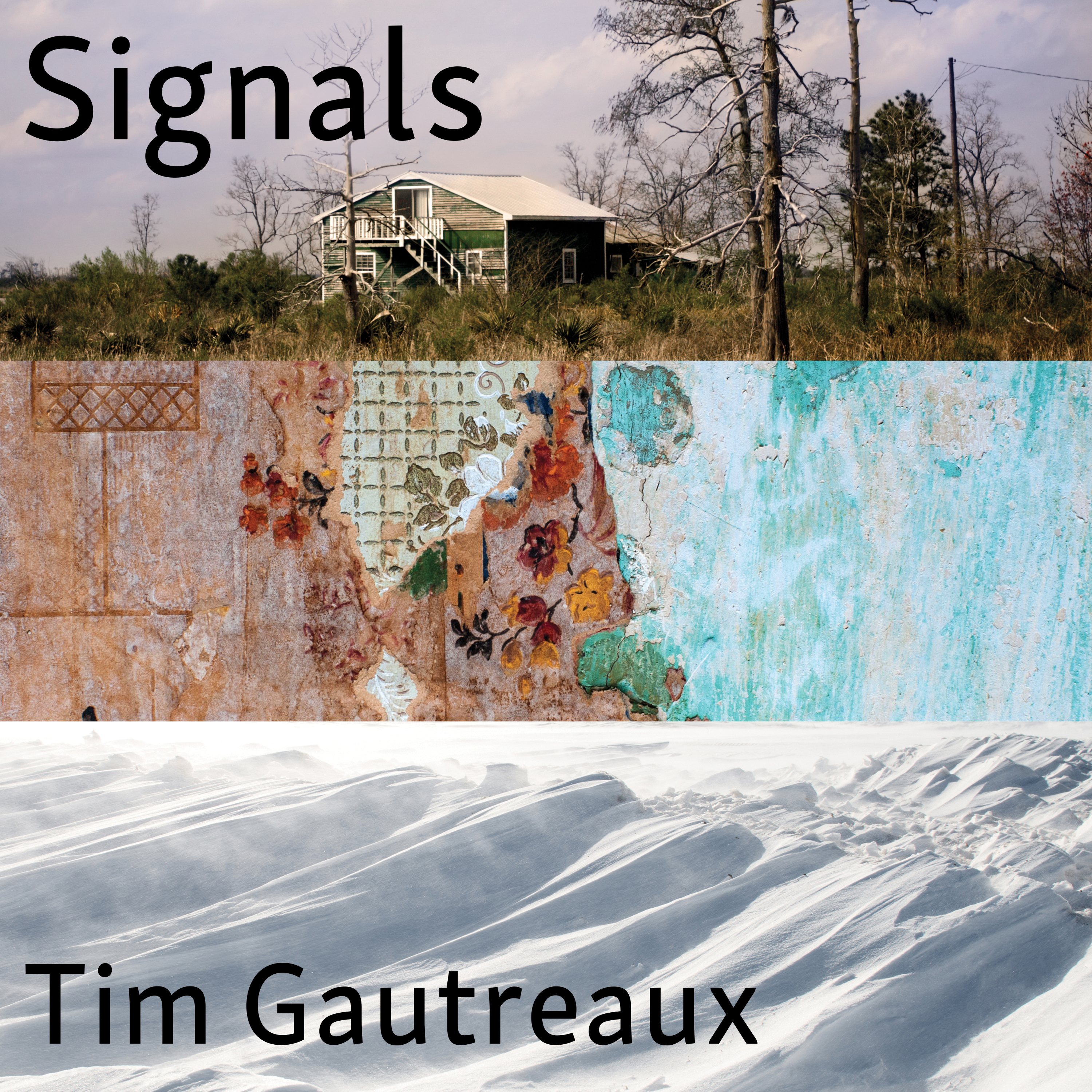 Printable Signals: New and Selected Stories Audiobook Cover Art