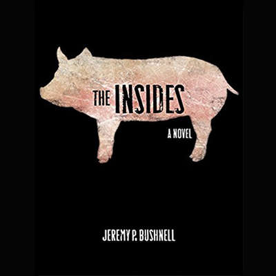The Insides Audiobook, by Jeremy Bushnell