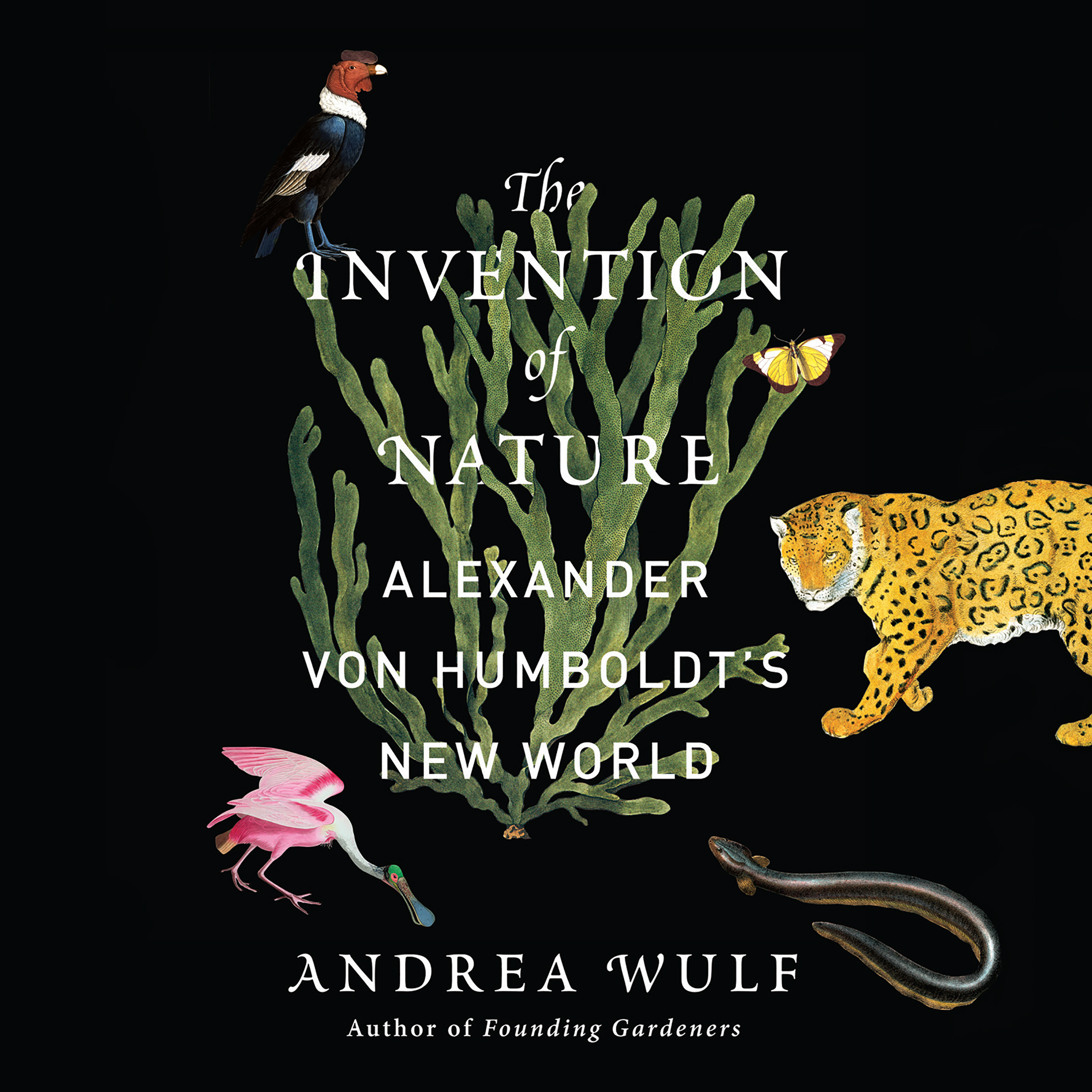 Printable The Invention of Nature: Alexander von Humboldt's New World Audiobook Cover Art