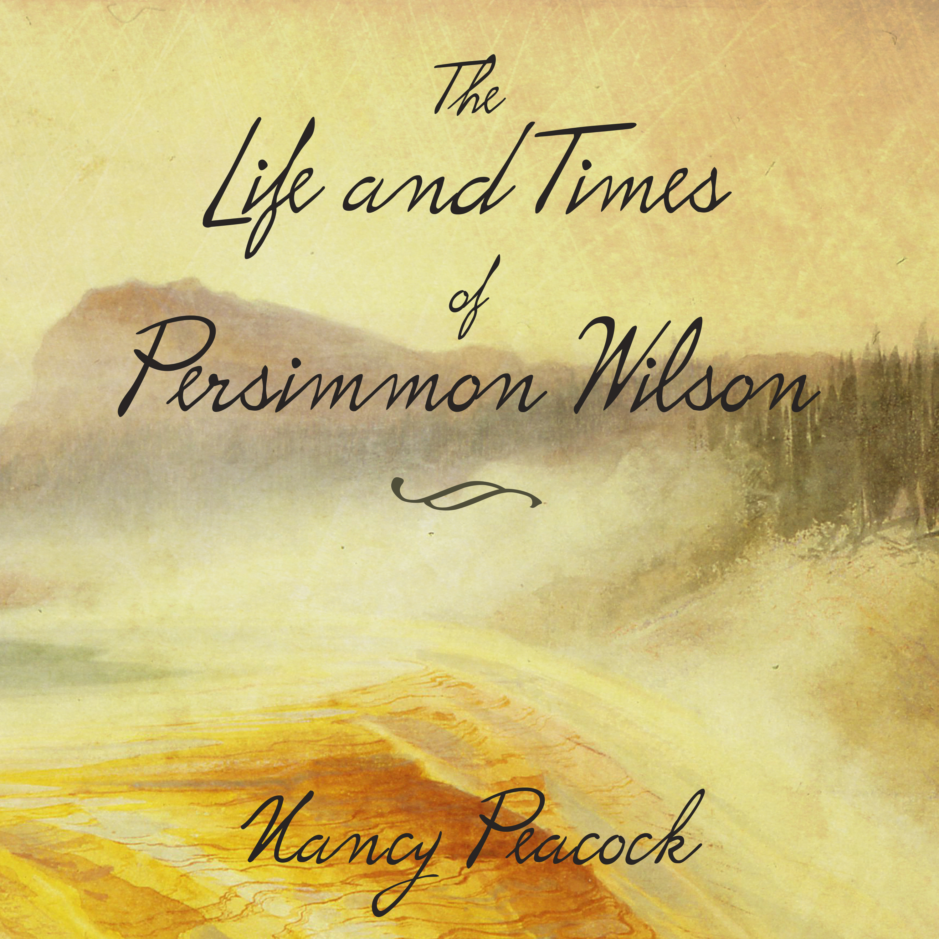 Printable The Life and Times of Persimmon Wilson: A Novel Audiobook Cover Art
