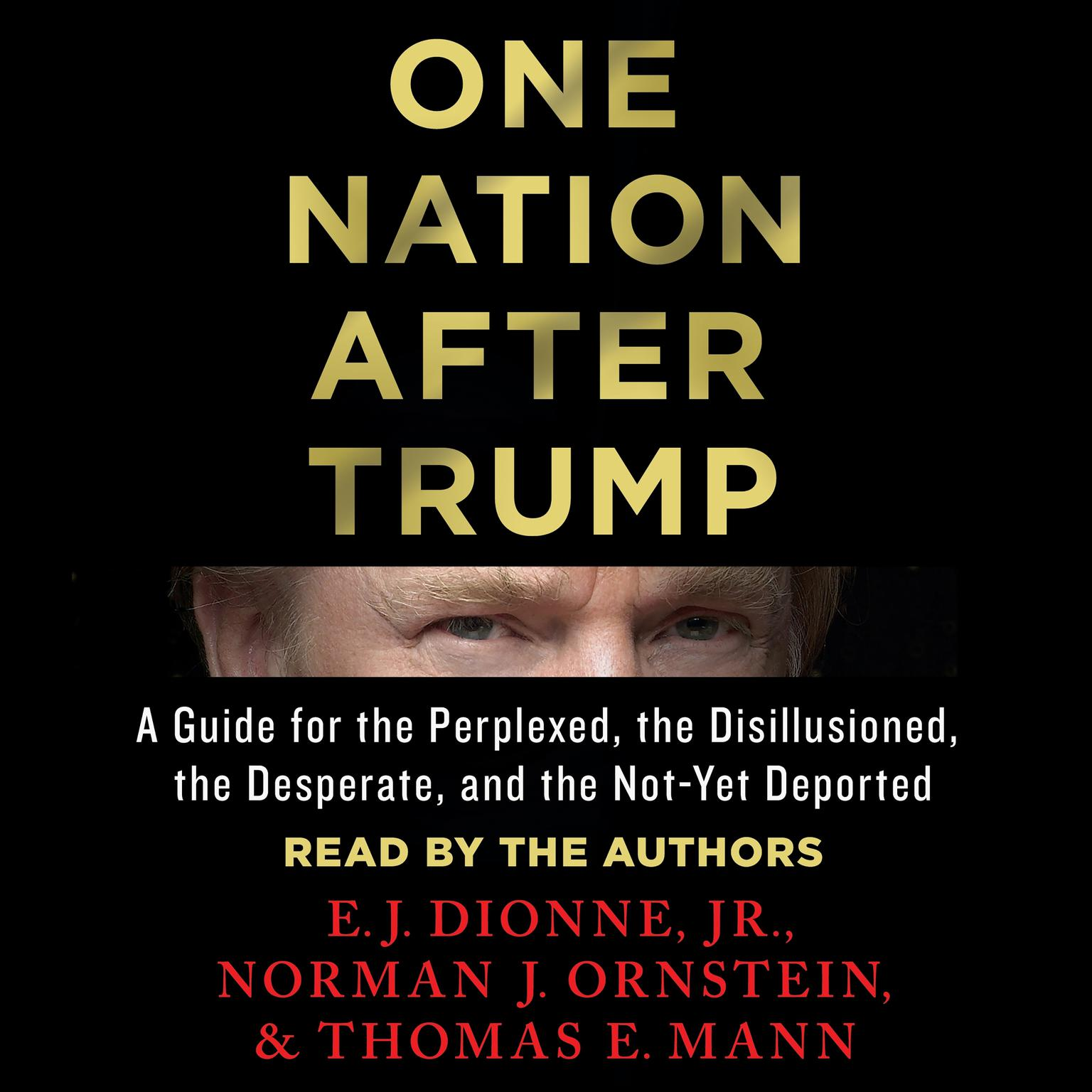 Printable One Nation After Trump: A Guide for the Perplexed, the Disillusioned, the Desperate, and the Not-Yet Deported Audiobook Cover Art