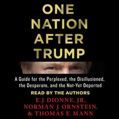 One Nation After Trump: A Guide for the Perplexed, the Disillusioned, the Desperate, and the Not-Yet Deported Audiobook, by Norman J. Ornstein, Thomas E. Mann