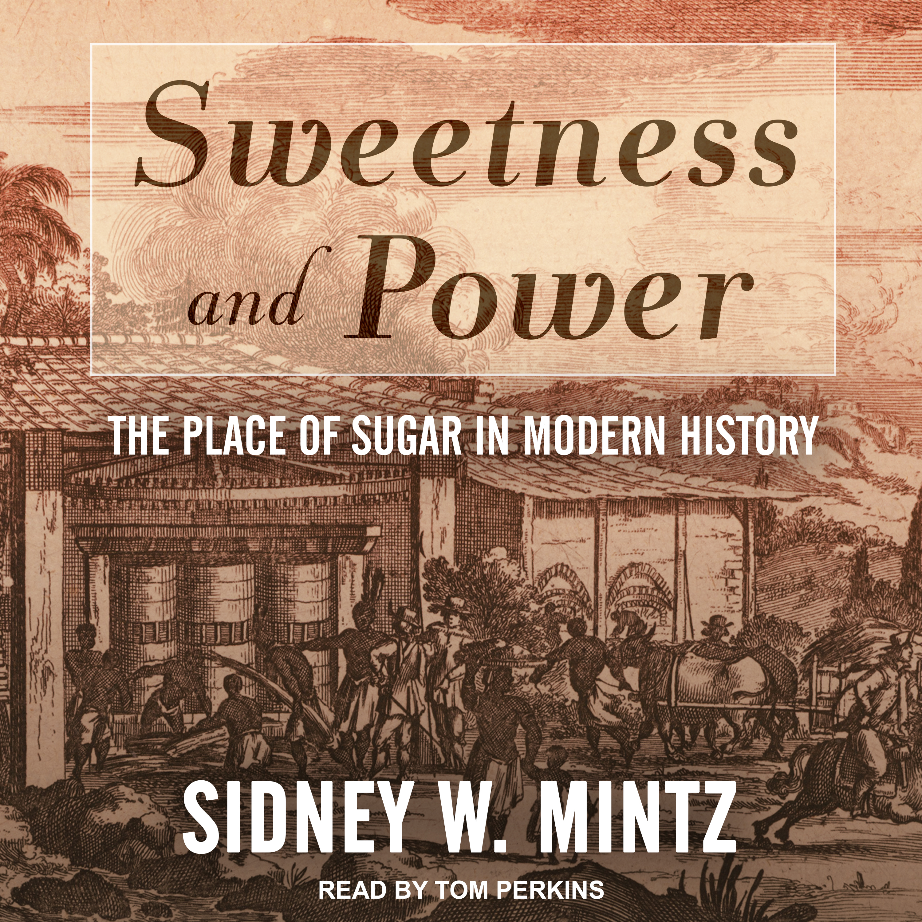 Printable Sweetness and Power: The Place of Sugar in Modern History Audiobook Cover Art