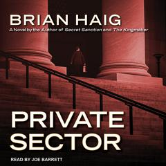 Private Sector Audiobook, by Brian Haig