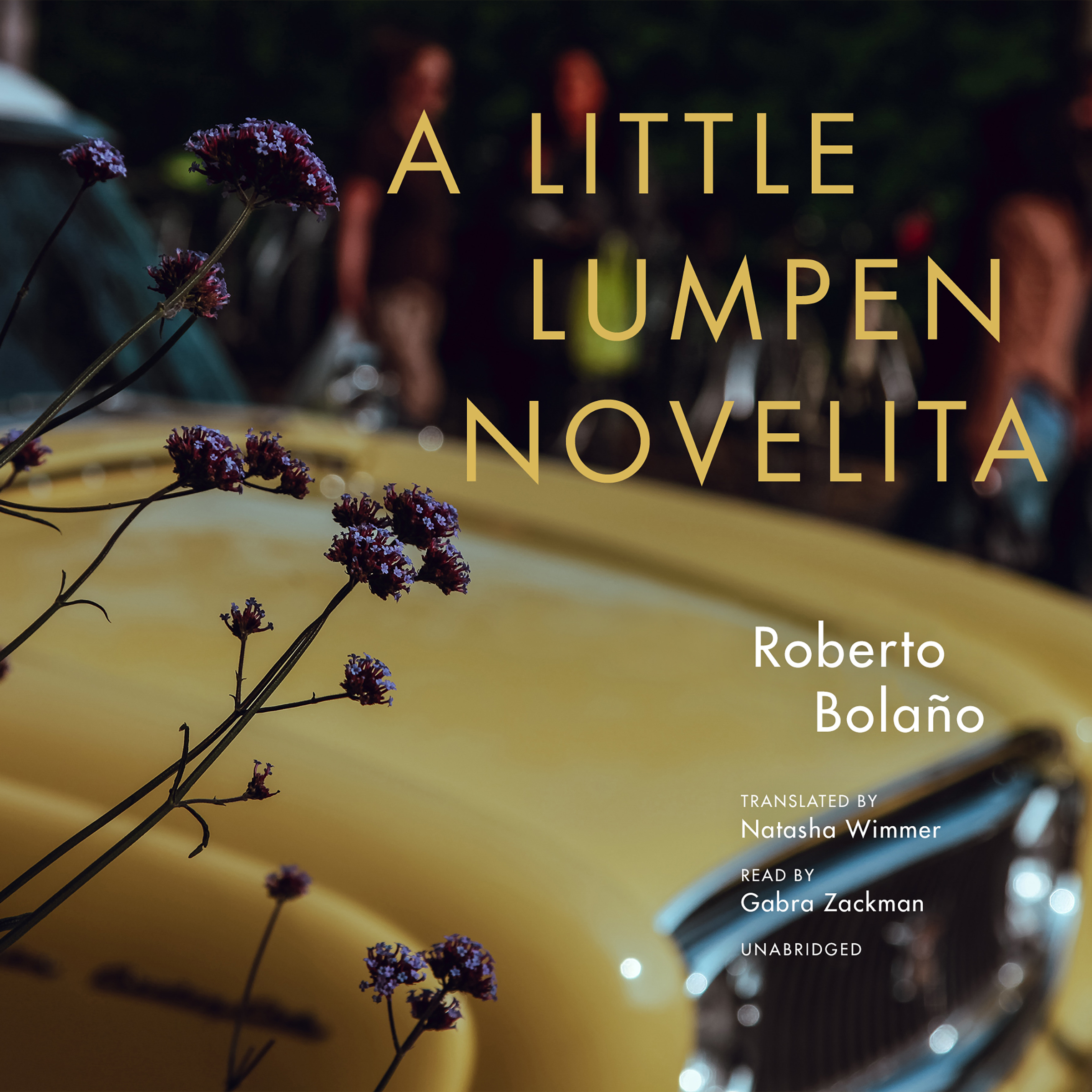 Printable A Little Lumpen Novelita Audiobook Cover Art