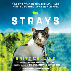 Strays: A Lost Cat, a Homeless Man, and Their Journey across America Audiobook, by Britt Collins