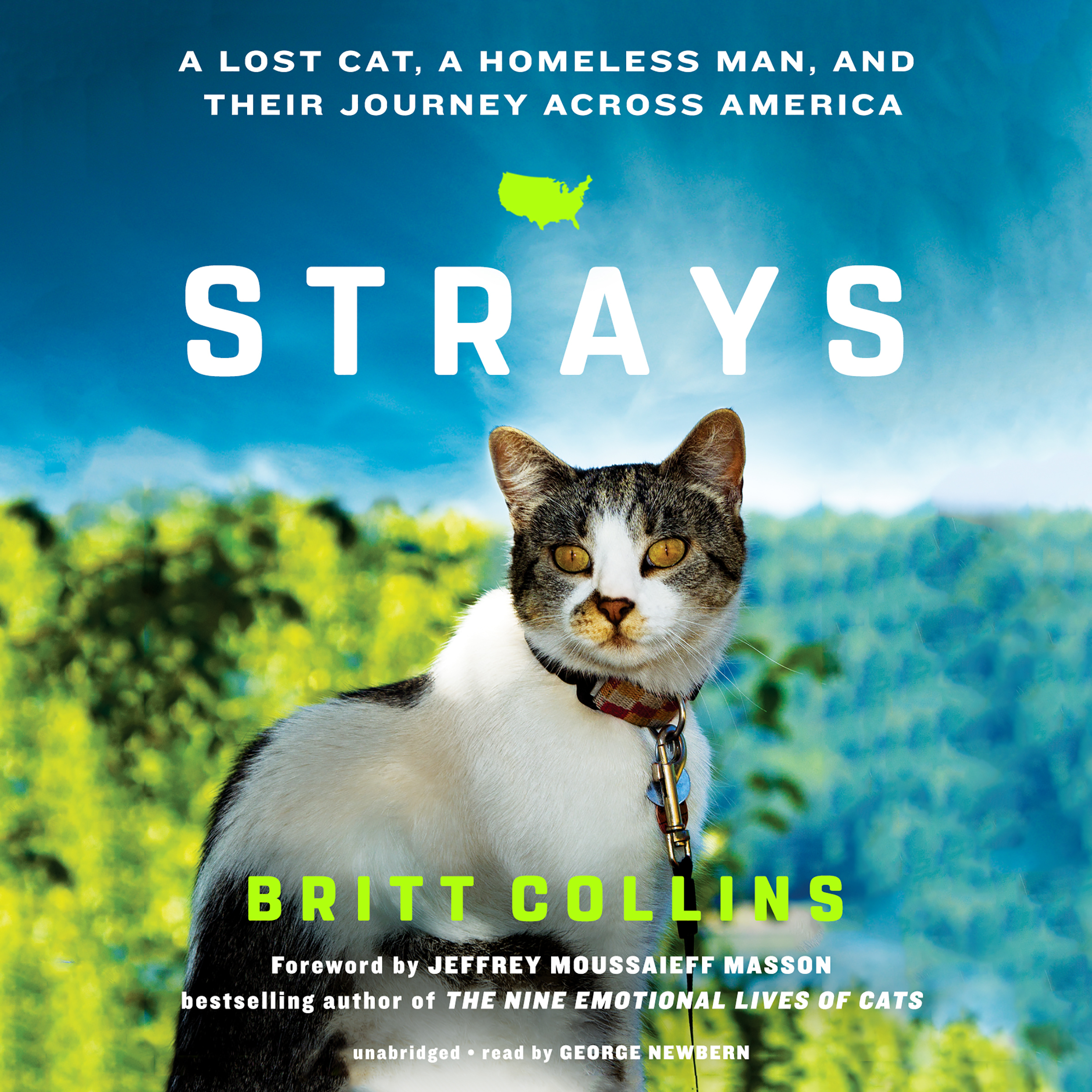 Printable Strays: A Lost Cat, a Homeless Man, and Their Journey across America Audiobook Cover Art