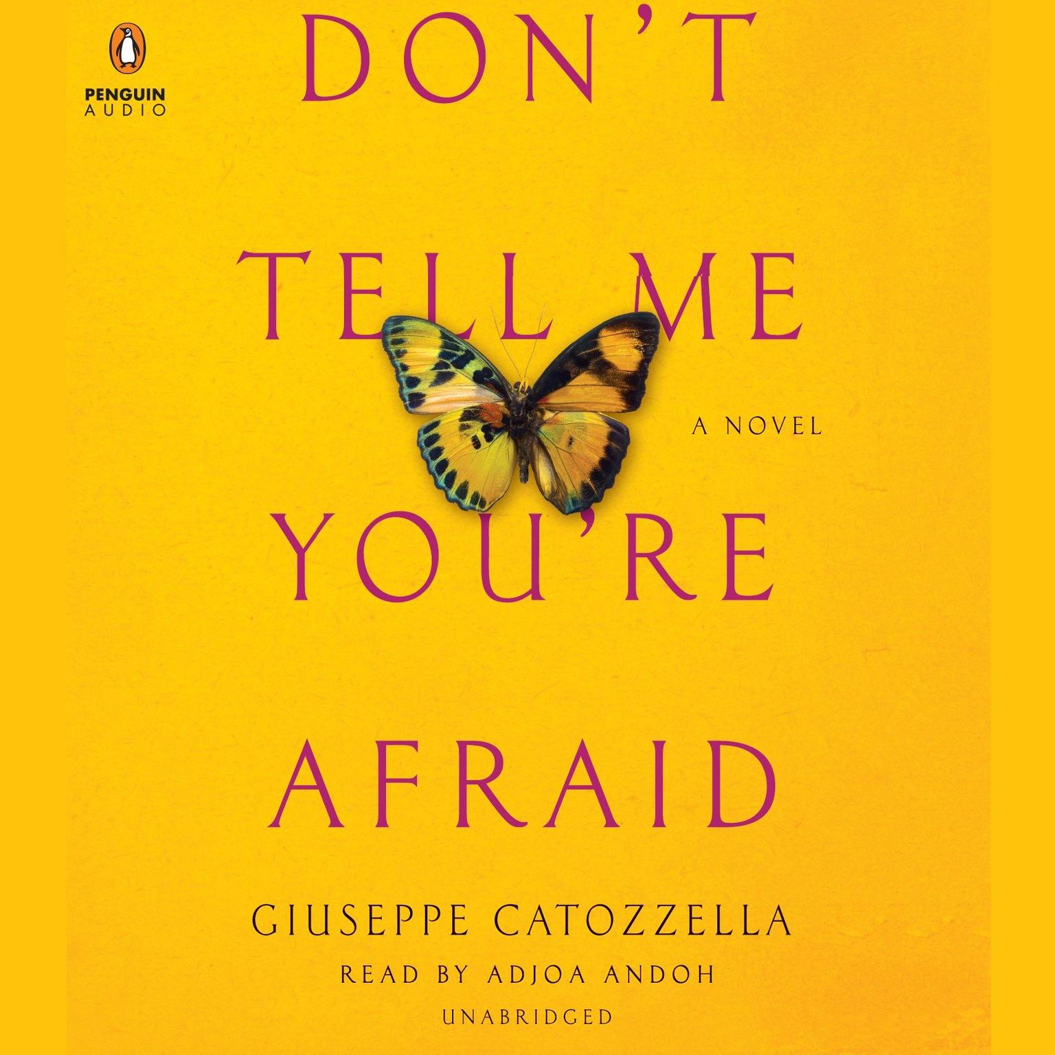 Printable Don't Tell Me You're Afraid: A Novel Audiobook Cover Art