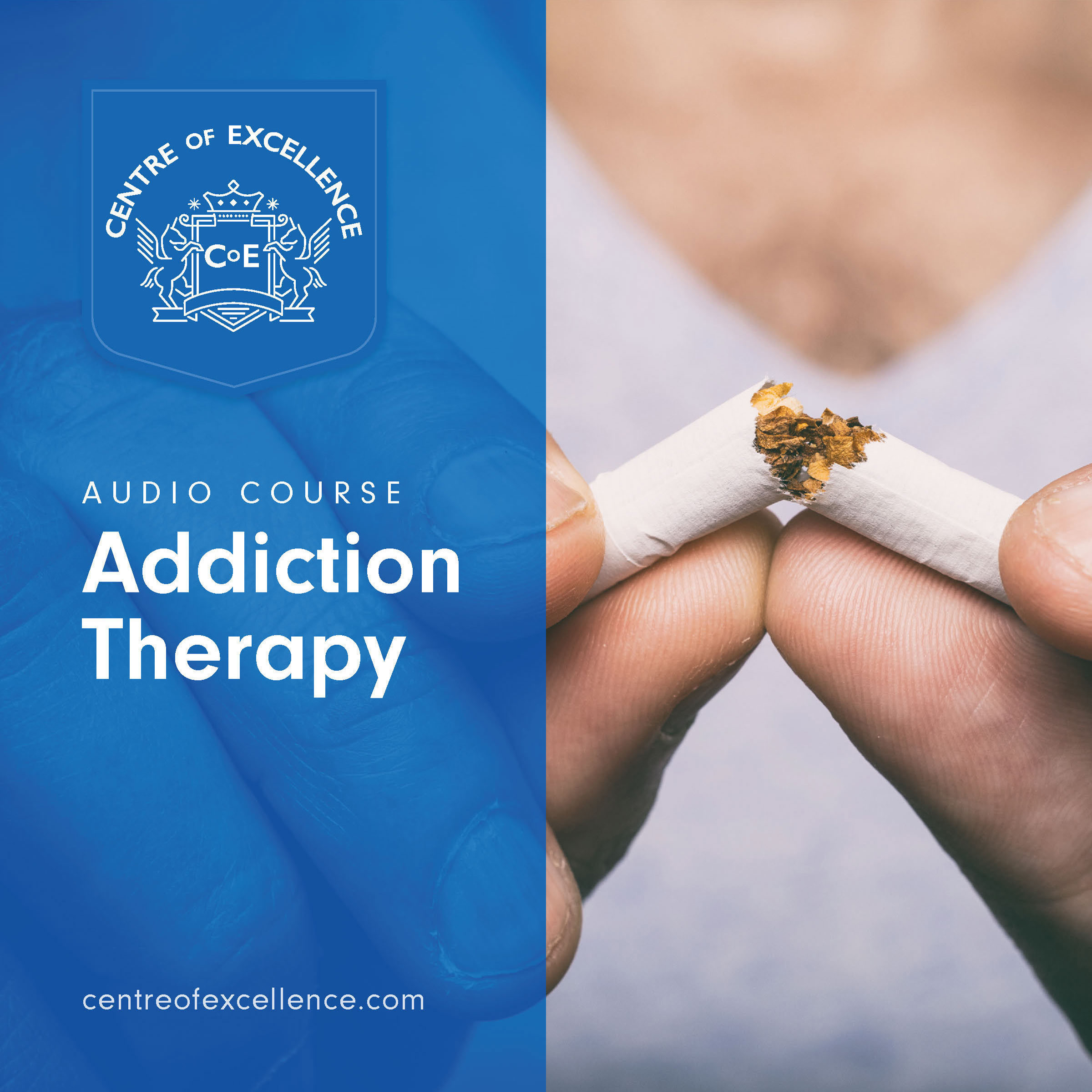 Printable Addiction Therapy Audiobook Cover Art