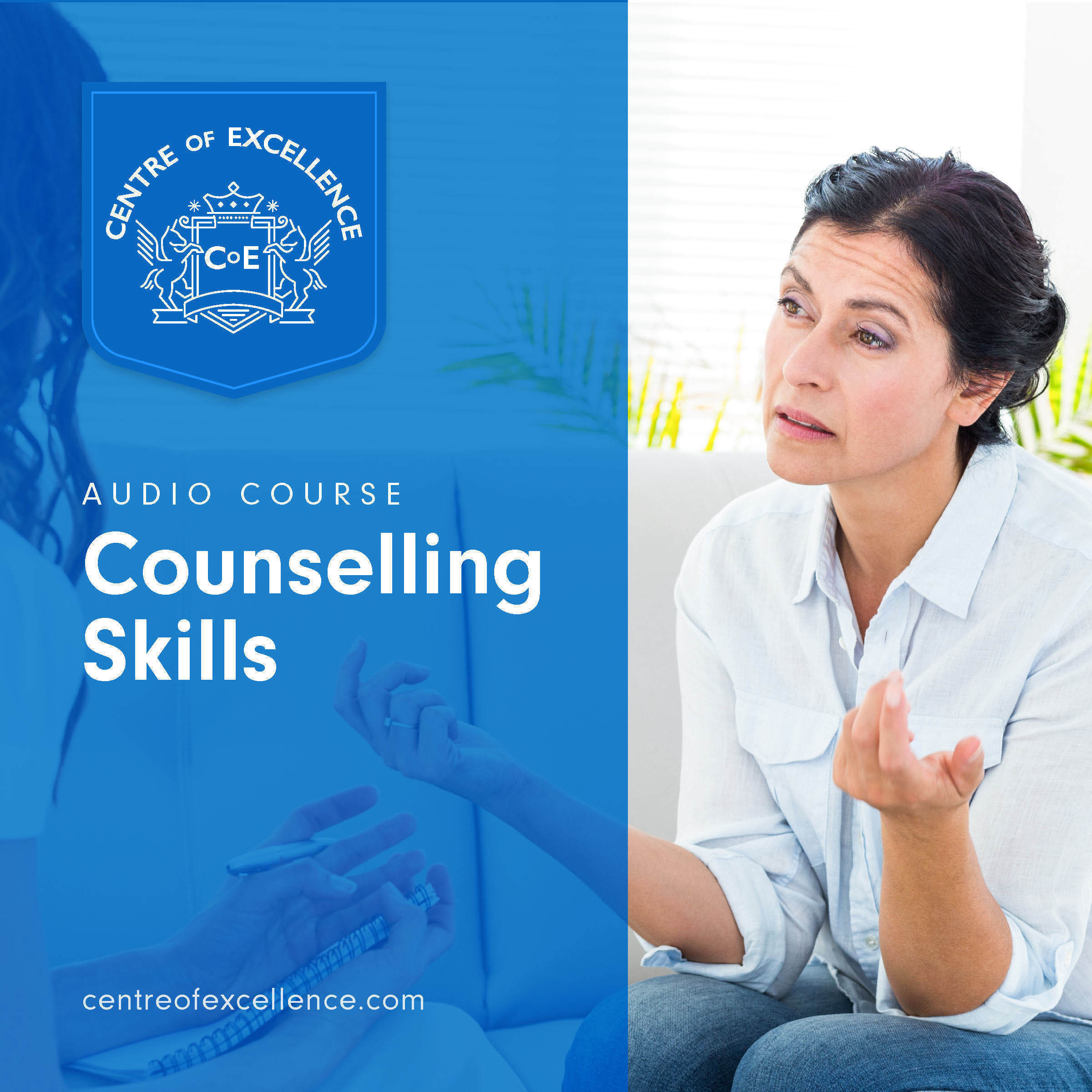 Printable Counselling Skills Audiobook Cover Art
