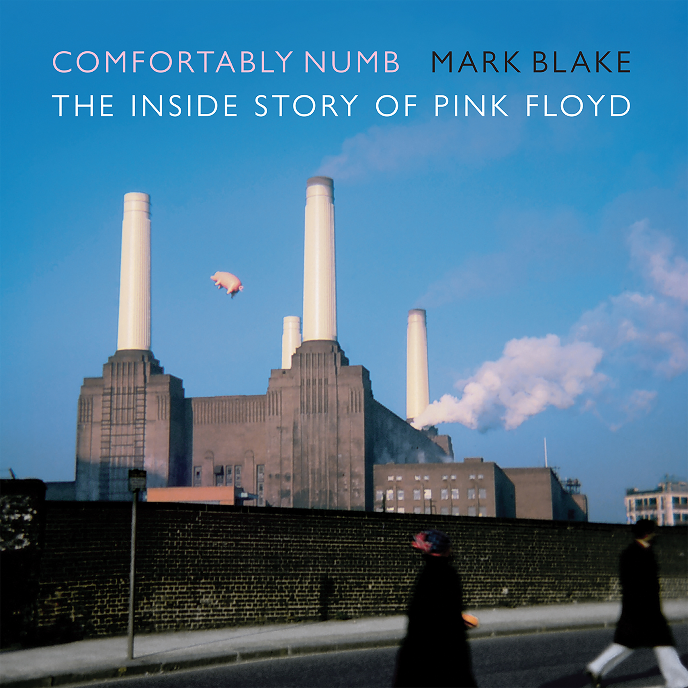 Printable Comfortably Numb: The Inside Story of Pink Floyd Audiobook Cover Art