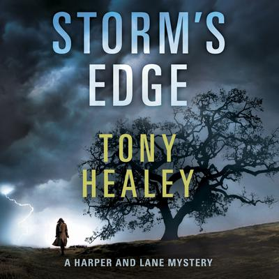 Storms Edge Audiobook, by Tony Healey