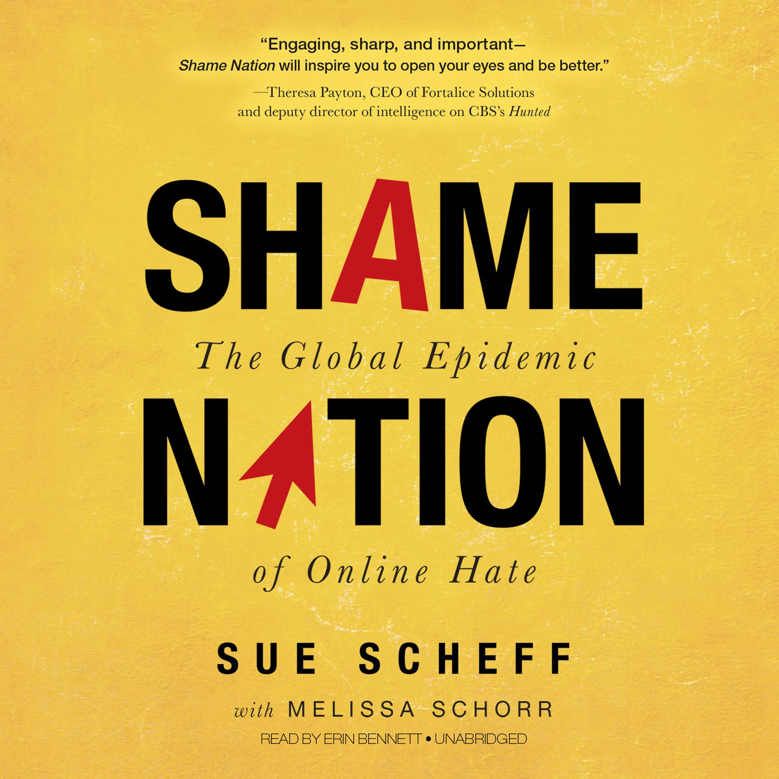 Printable Shame Nation: The Global Epidemic of Online Hate Audiobook Cover Art