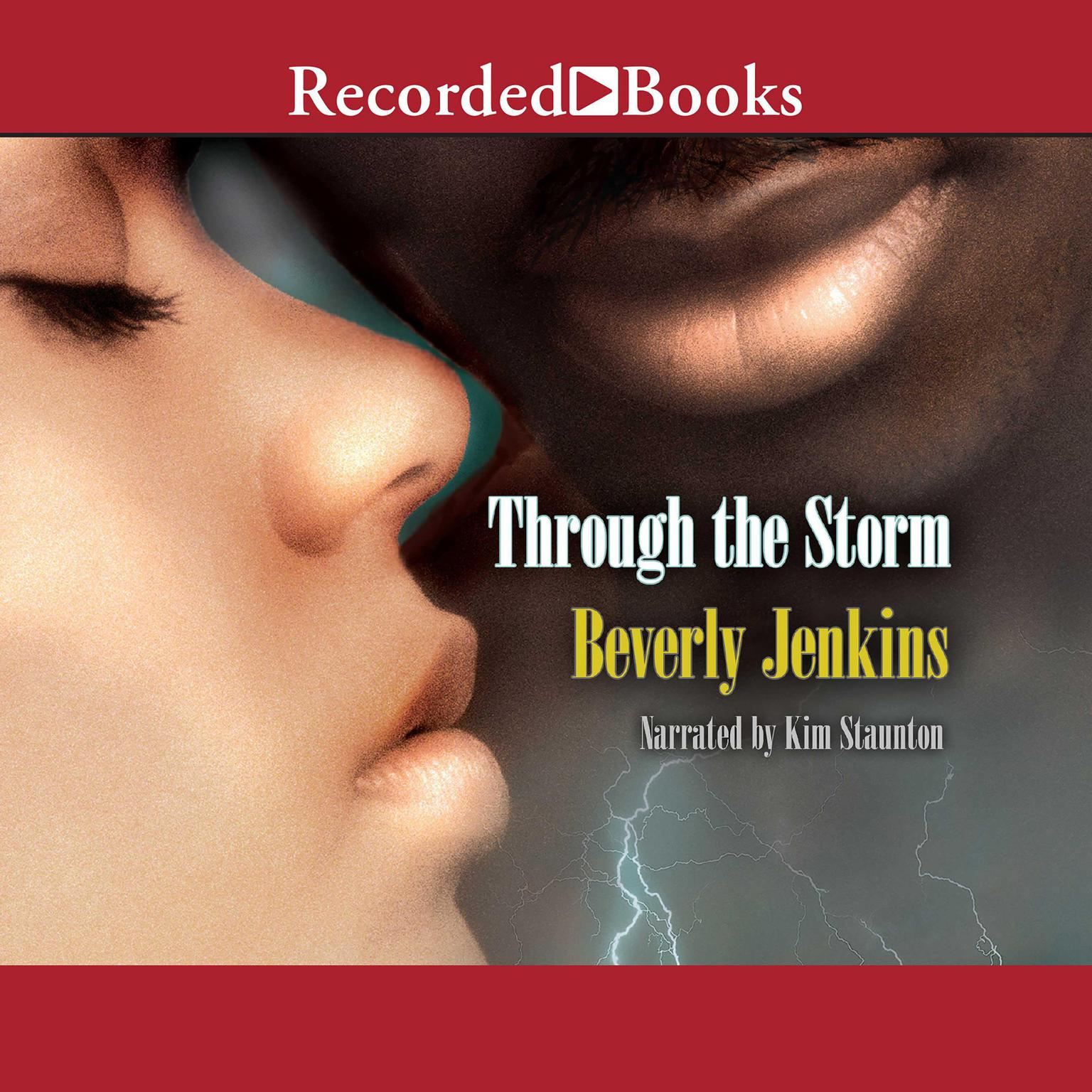 Printable Through the Storm Audiobook Cover Art