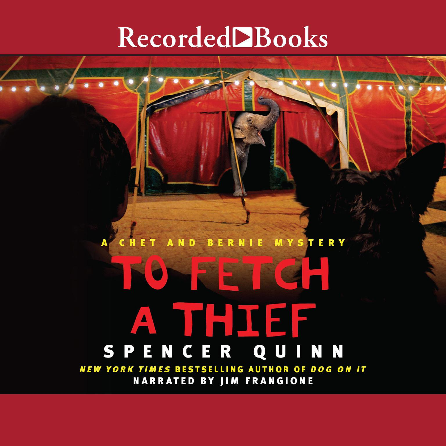 Printable To Fetch a Thief Audiobook Cover Art