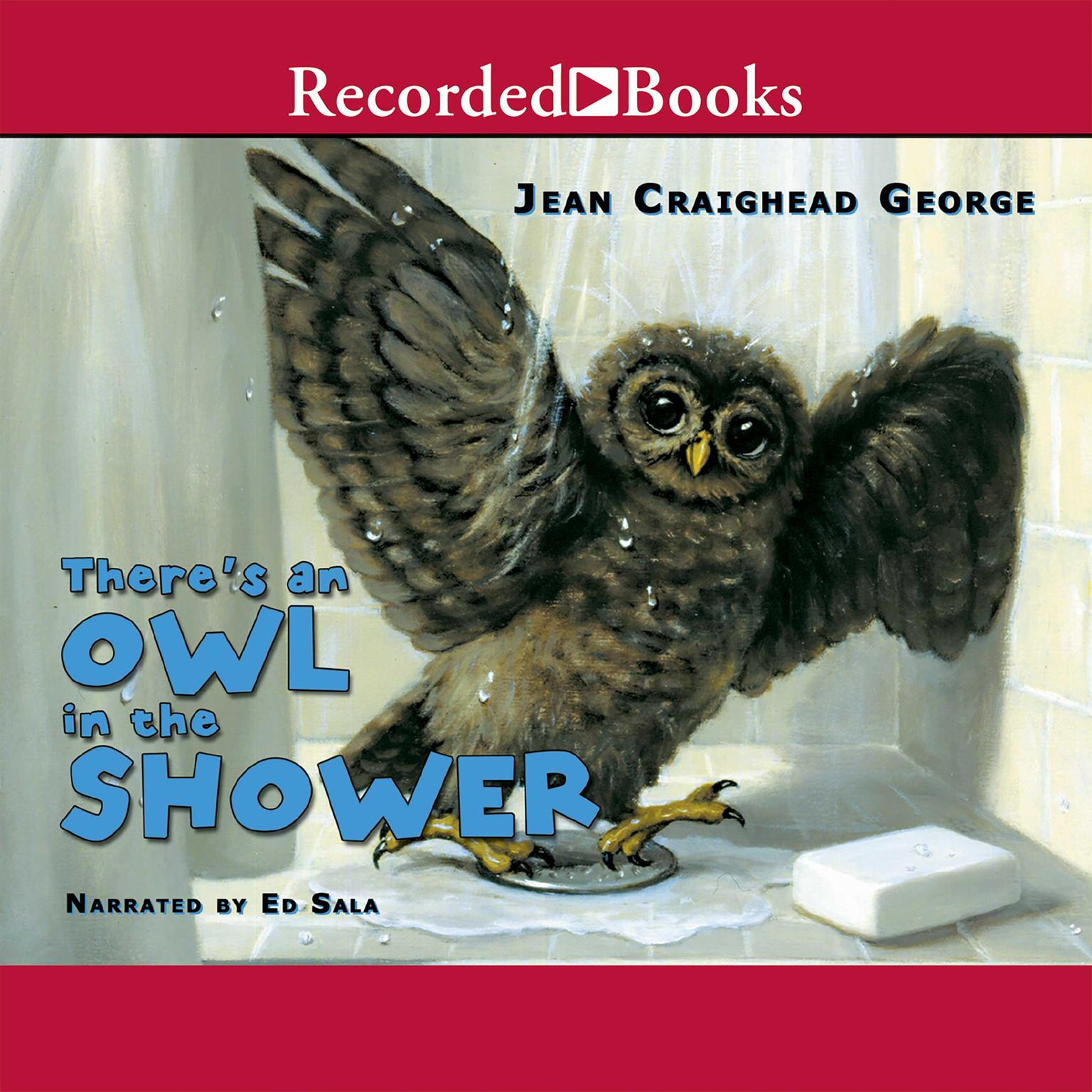 Printable There's an Owl in the Shower Audiobook Cover Art