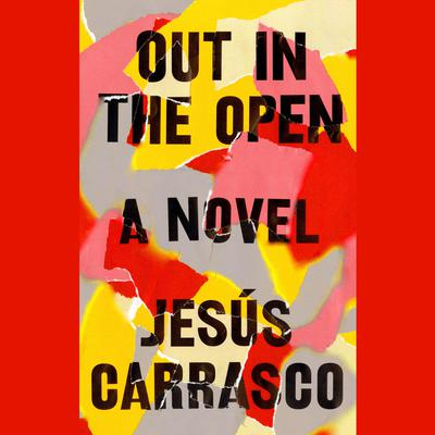 Out in the Open: A Novel Audiobook, by Jesús Carrasco