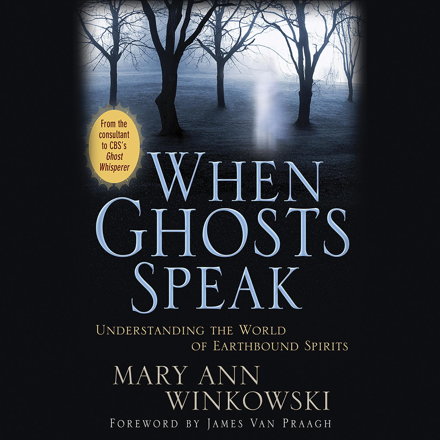Printable When Ghosts Speak: Understanding the World of Earthbound Spirits Audiobook Cover Art