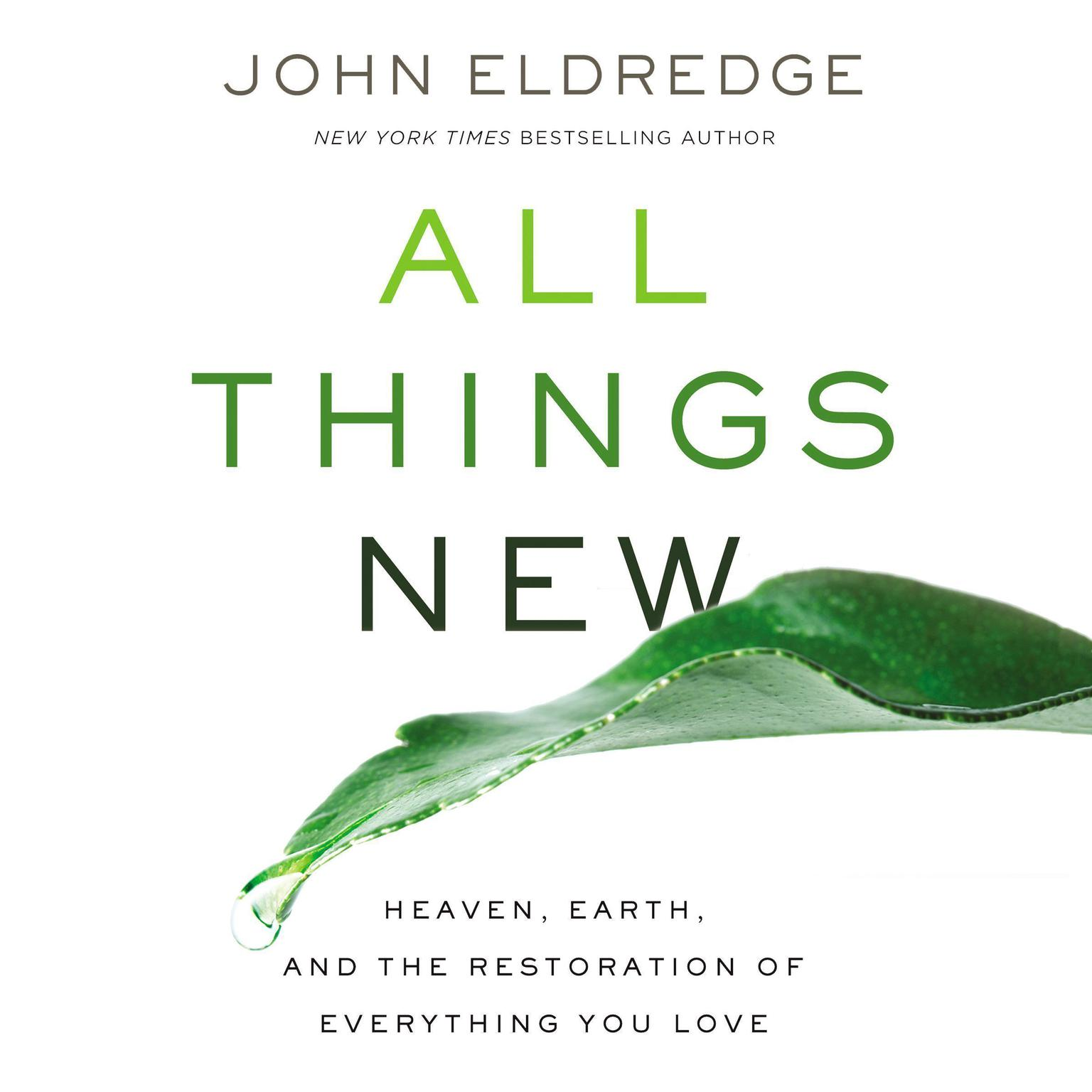 Printable All Things New: Heaven, Earth, and the Restoration of Everything You Love Audiobook Cover Art