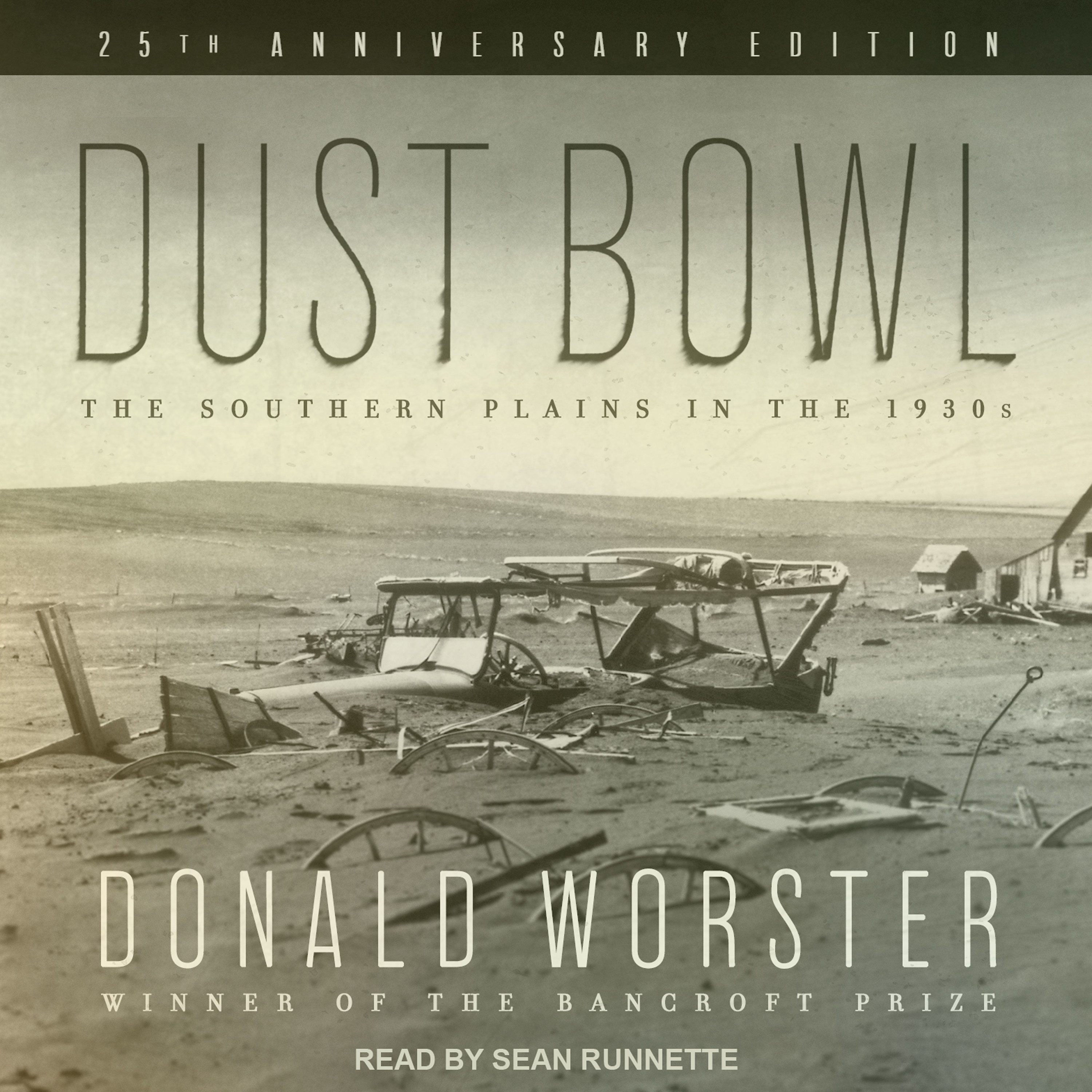 Printable Dust Bowl: The Southern Plains in the 1930s Audiobook Cover Art