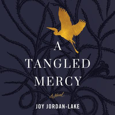 A Tangled Mercy: A Novel Audiobook, by Joy Jordan-Lake