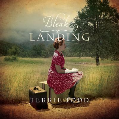 Bleak Landing Audiobook, by Terrie Todd