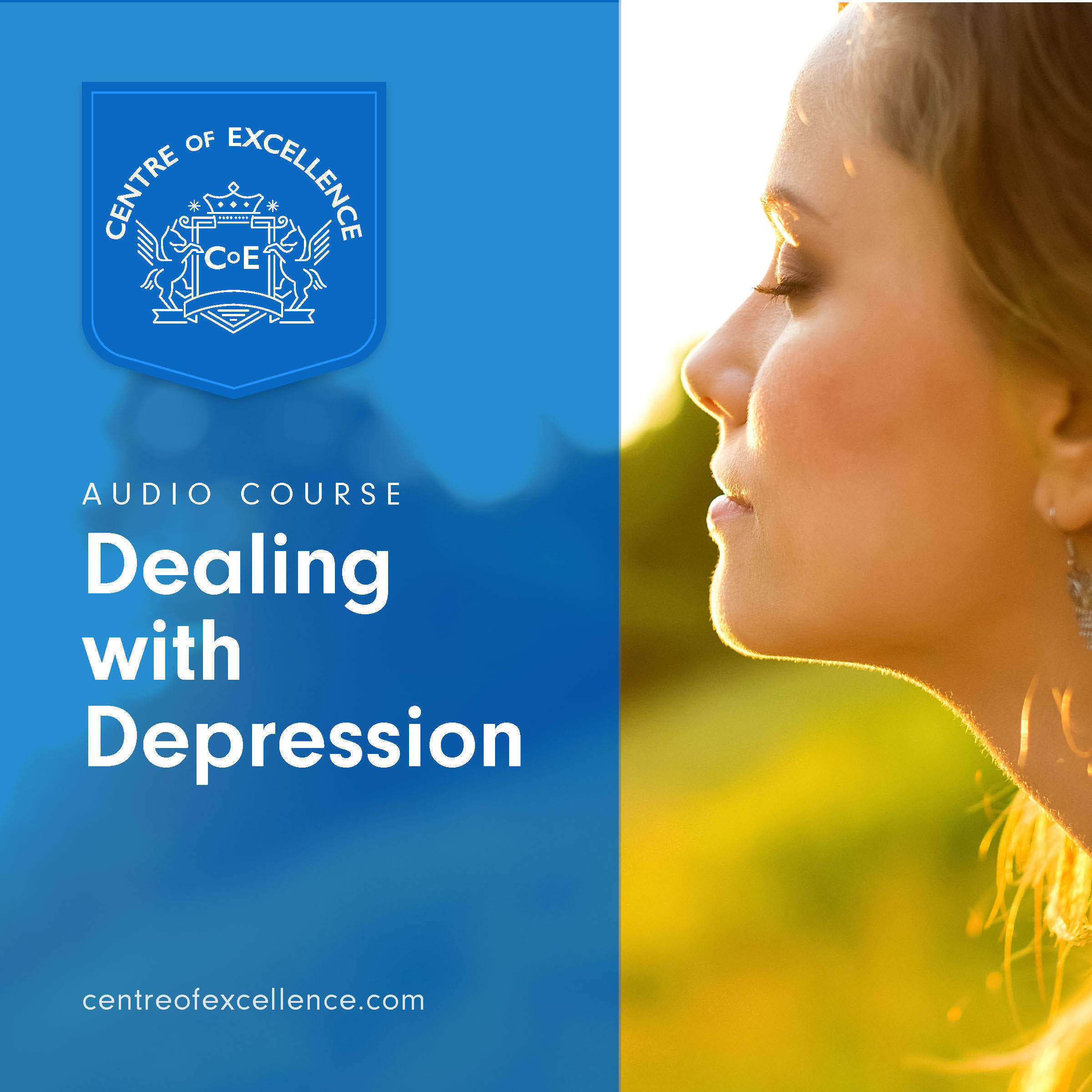 Printable Dealing With Depression Audiobook Cover Art