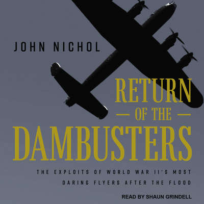 Return of the Dambusters: The Exploits of World War IIs Most Daring Flyers After the Flood Audiobook, by John Nichol