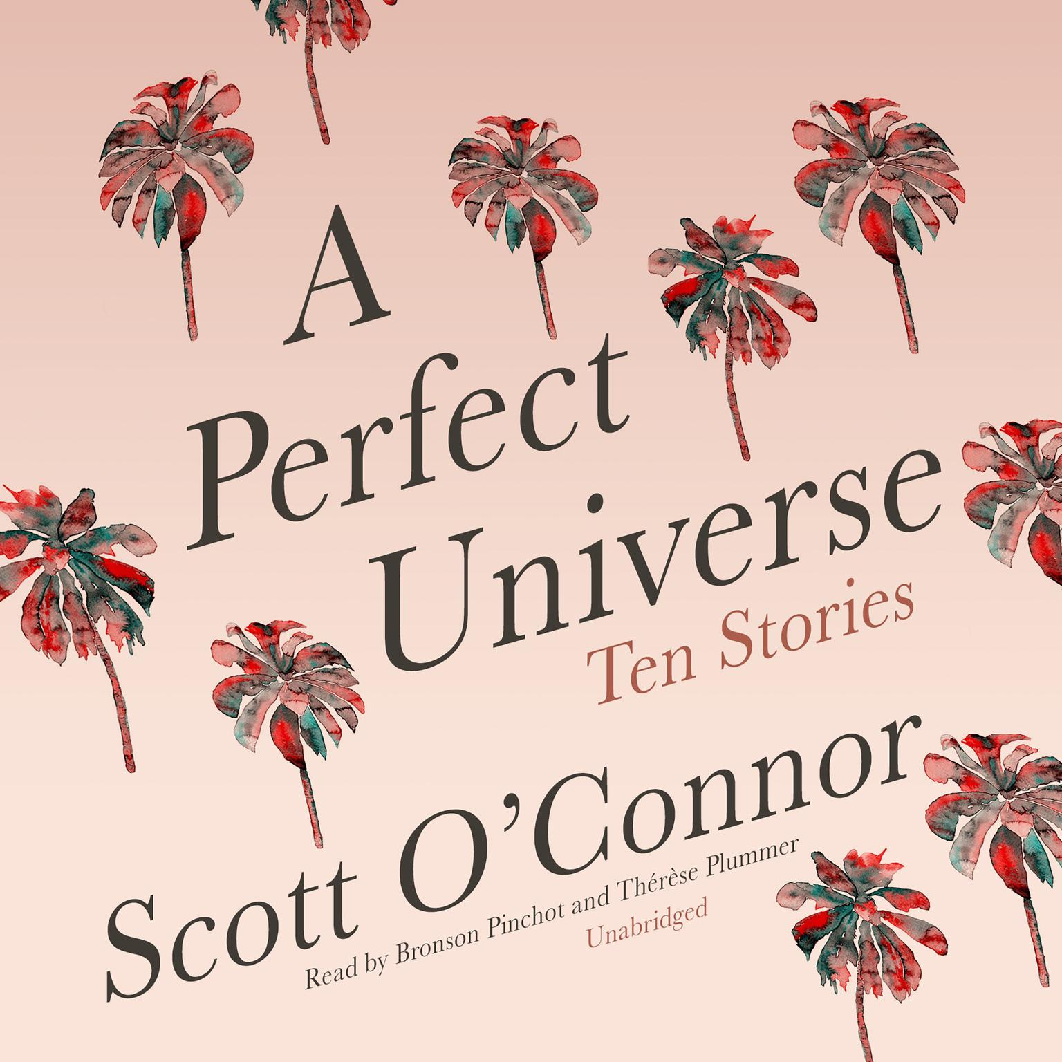 Printable A Perfect Universe: Ten Stories Audiobook Cover Art