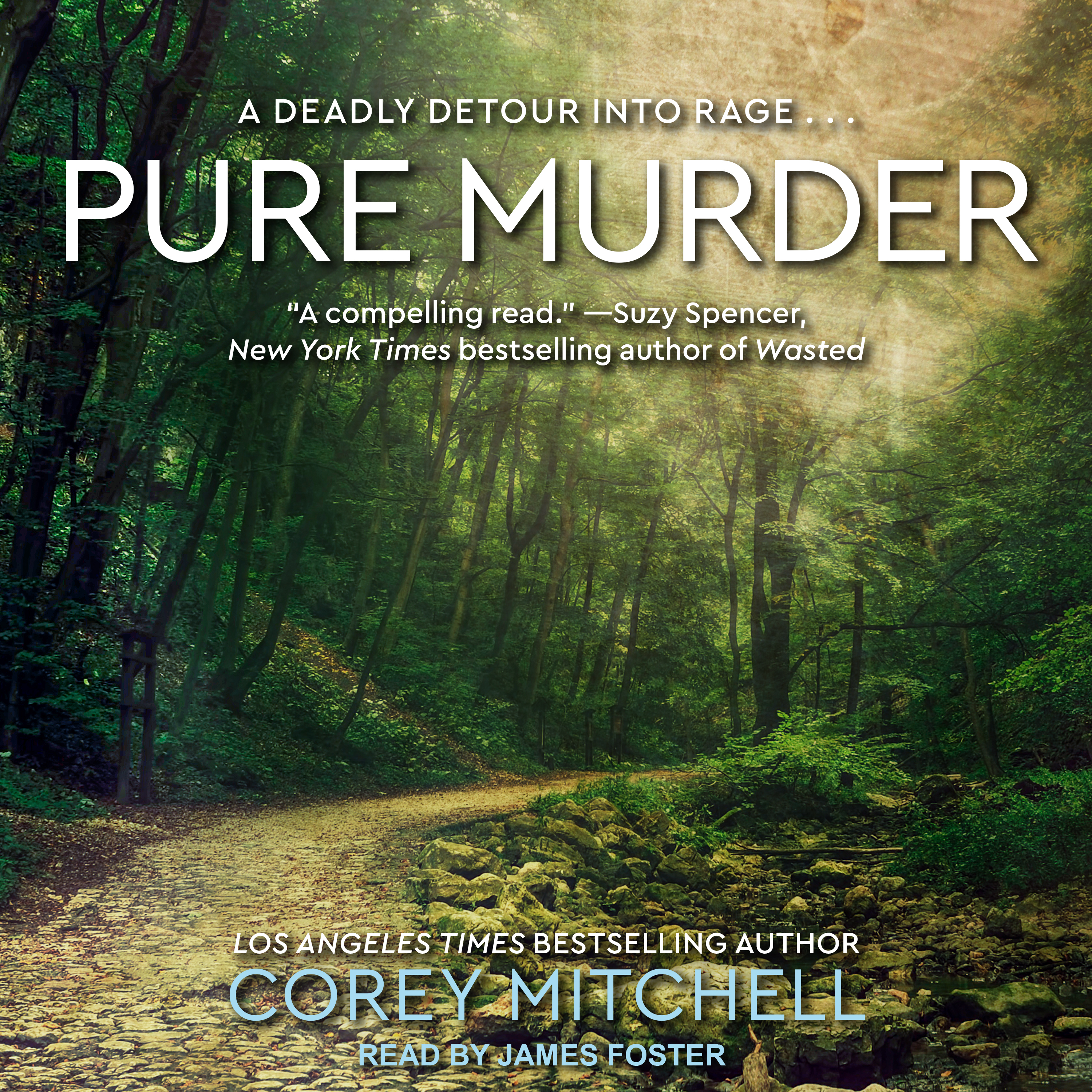Printable Pure Murder Audiobook Cover Art