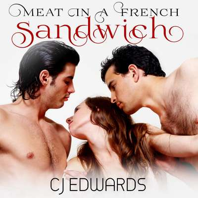 Meat in a French Sandwich  Audiobook, by C J Edwards