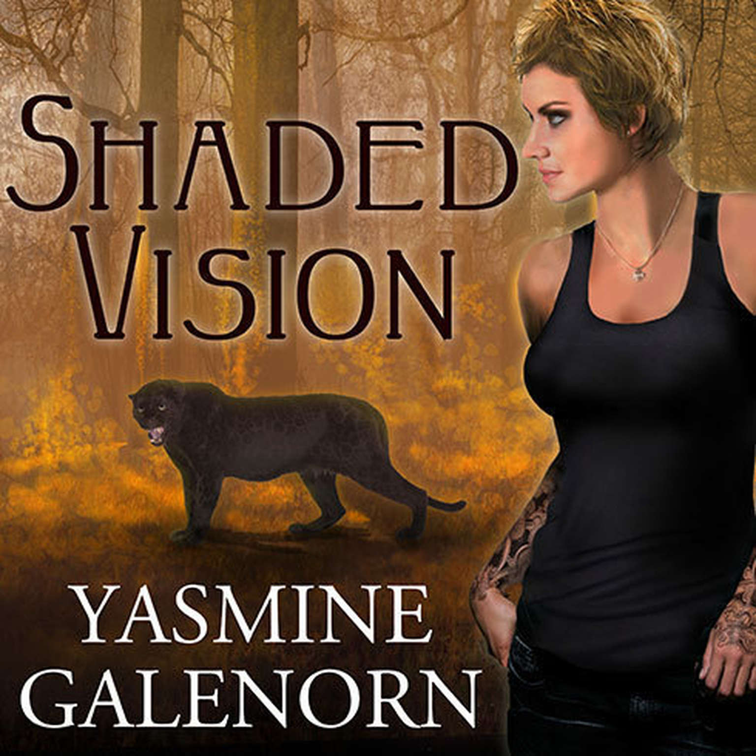 Printable Shaded Vision Audiobook Cover Art