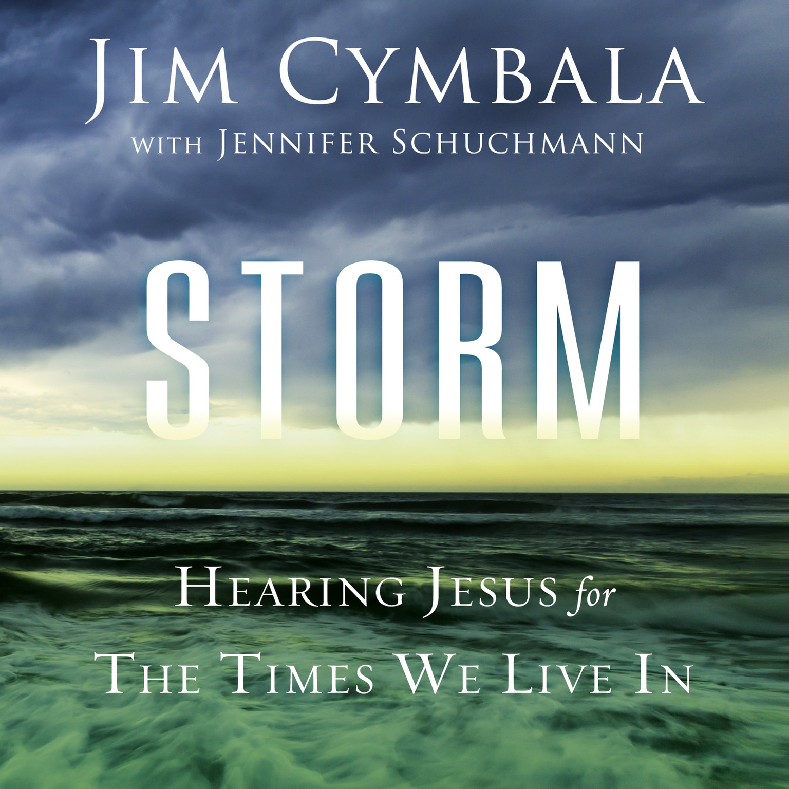 Printable Storm: Hearing Jesus for the Times We Live In Audiobook Cover Art
