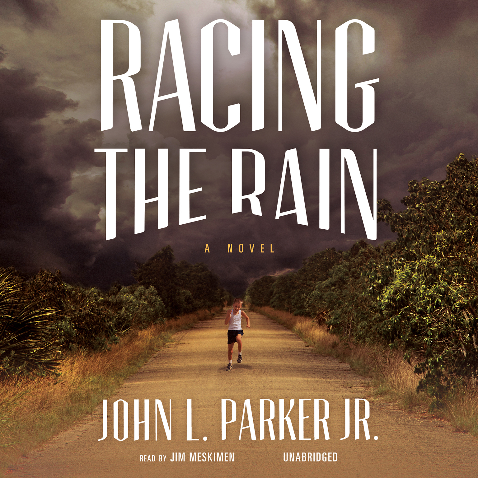 Printable Racing the Rain: A Novel Audiobook Cover Art