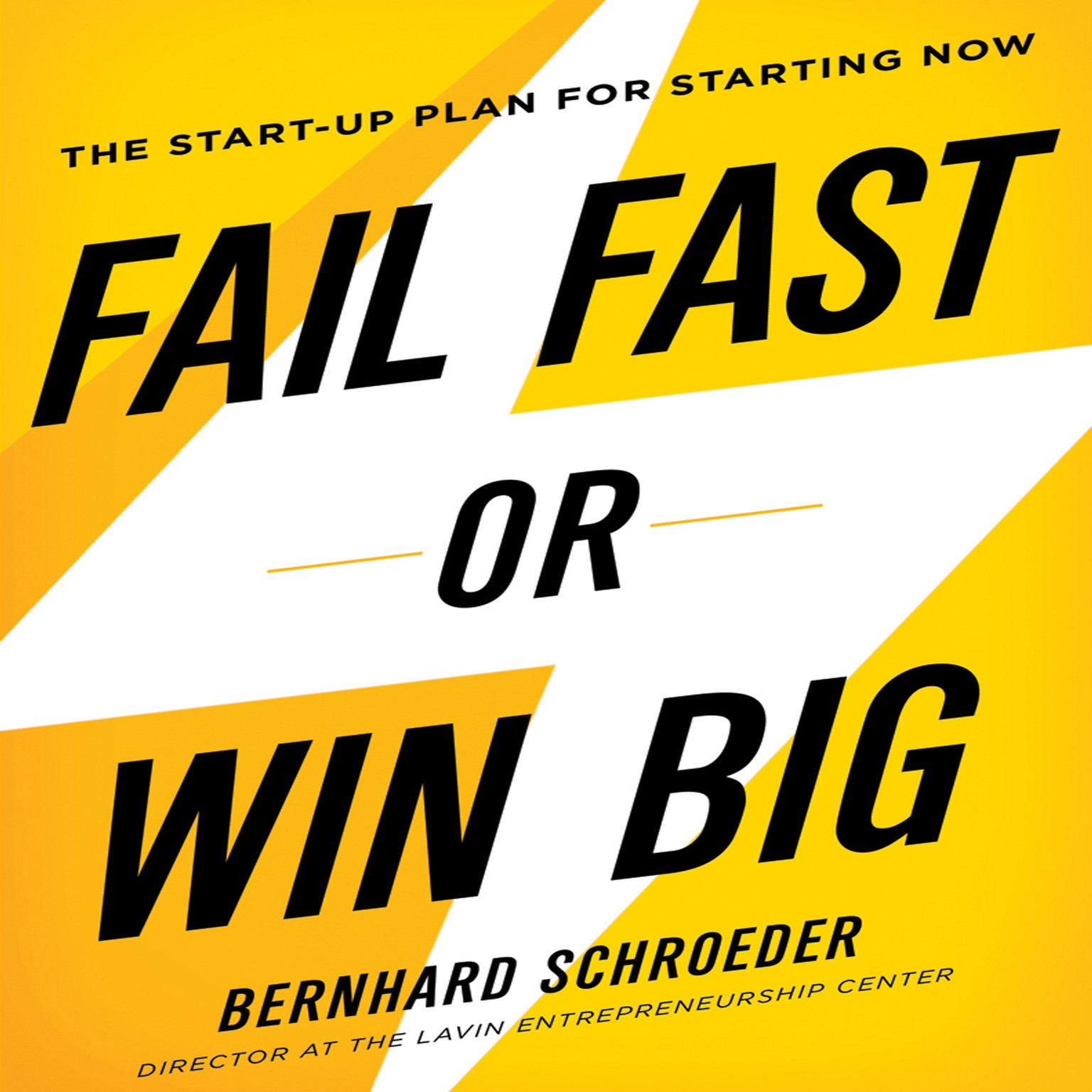 Printable Fail Fast or Win Big: The Start-Up Plan for Starting Now Audiobook Cover Art