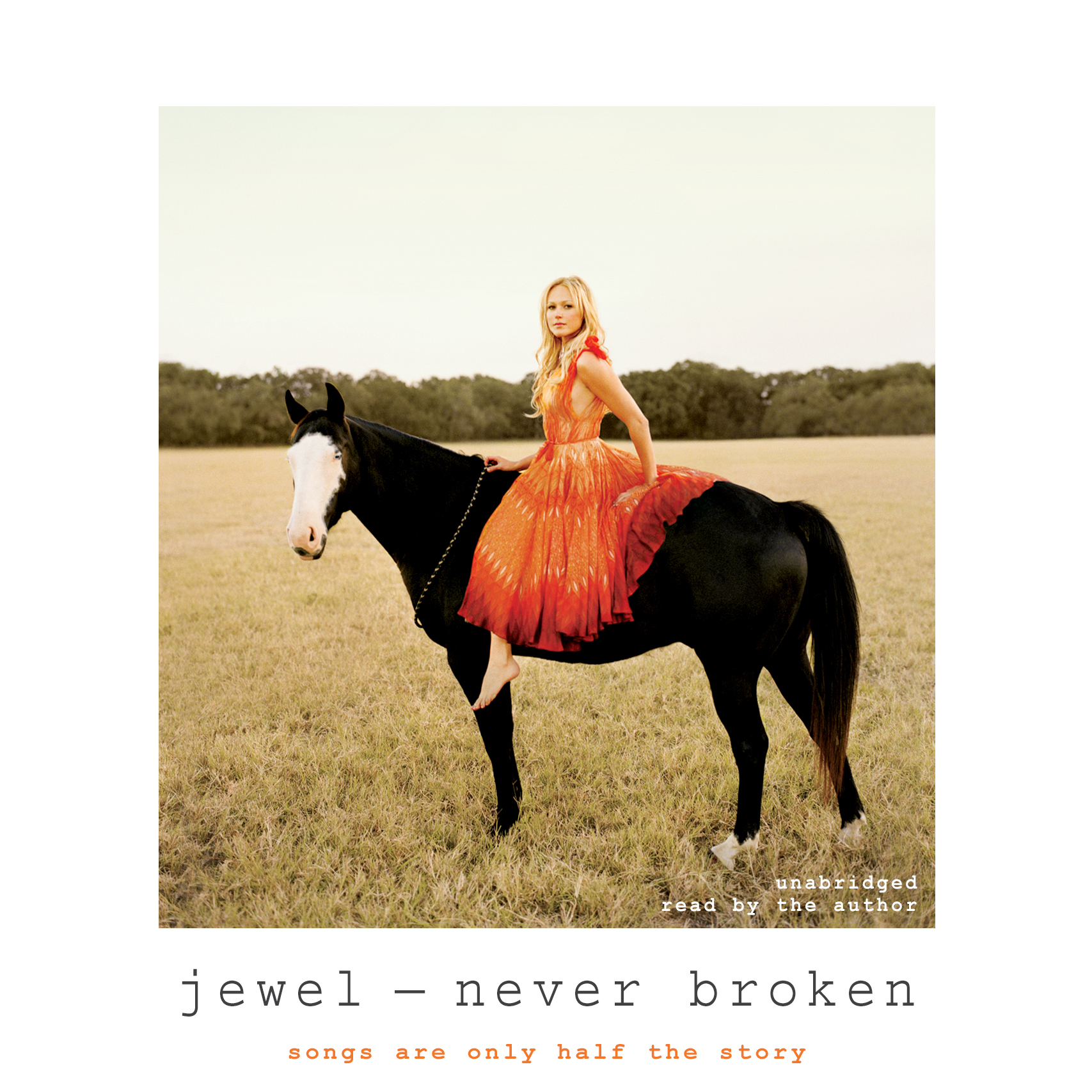 Printable Never Broken: Songs Are Only Half the Story Audiobook Cover Art