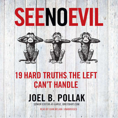 See No Evil: 19 Hard Truths the Left Can't Handle Audiobook, by Joel B. Pollak