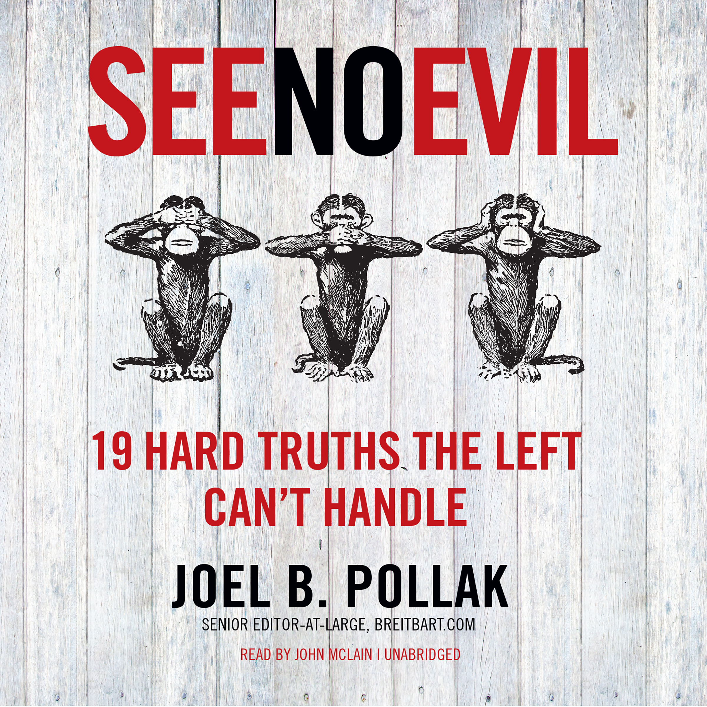 Printable See No Evil: 19 Hard Truths the Left Can't Handle Audiobook Cover Art